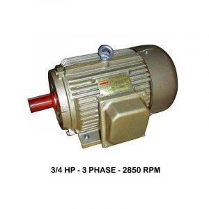 WIPRO 3Phase 2850rpm Elektromotor 3/4 HP